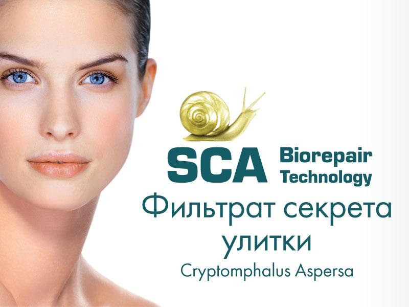 Ранозаживляющие и ремоделирующие свойства СЕКРЕТА УЛИТКИ и косметических средств на его основе ENDOCARE — SCA® Biorepair Technology